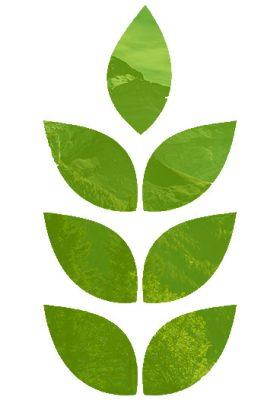 leafy graphic